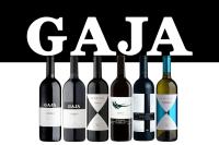 GAJA品酒会主图